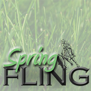 Enter the Spring Fling Cow Horse Show